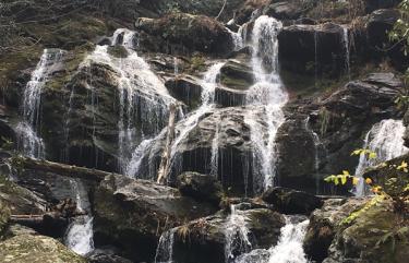 Waterfall Asheville